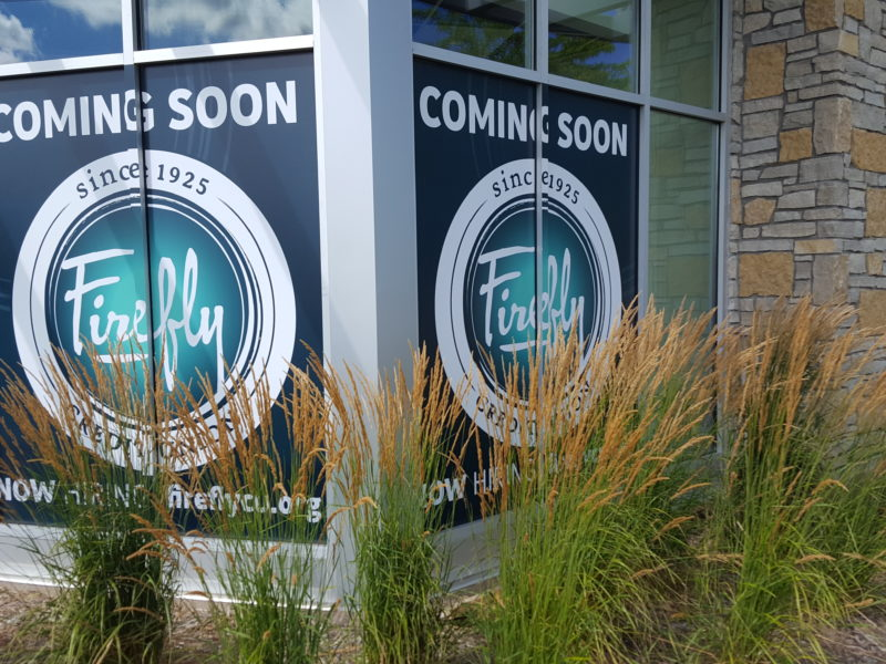 Window Graphics - Firefly Credit Union